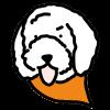 dogicon-orange